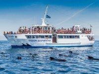 Alquiler de barco para 60 personas Tarifa 2 horas