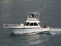 Navega en nuestro barco de pesca