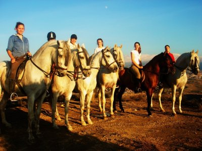 Horse riding tour trough Las Gabias, 1 hour.