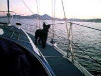 Cualquiera puede navegar con nosotros
