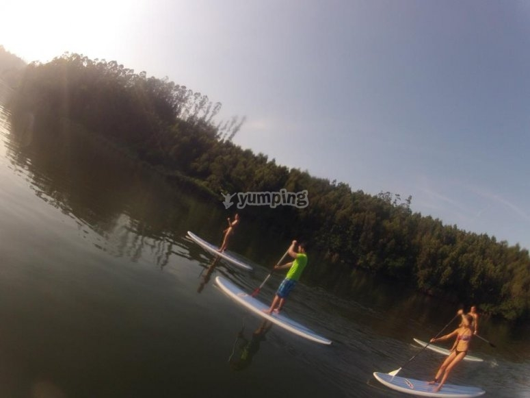 Paddle Surf a Rio