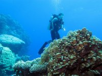 Get started in the world of diving