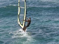 学会了风帆冲浪paracticar学习掌握波浪