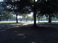 Practice quads in Delta del Ebro
