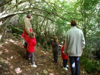 Tour the forests of Tarragona