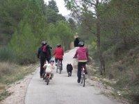 Bike routes in Tarragona