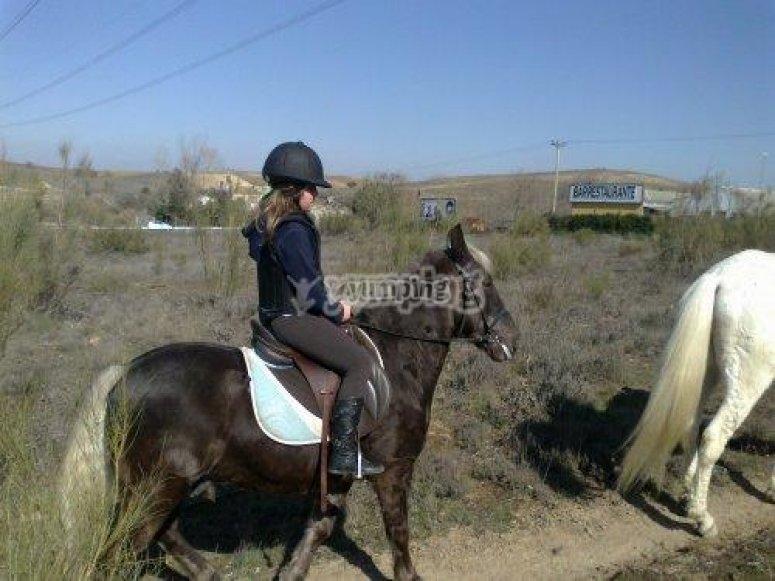 equitacion en xanadu