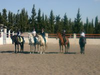 Riding students on the track with the horses