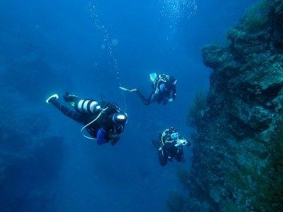 Inmersión de buceo en la Isla Bonita - La Palma