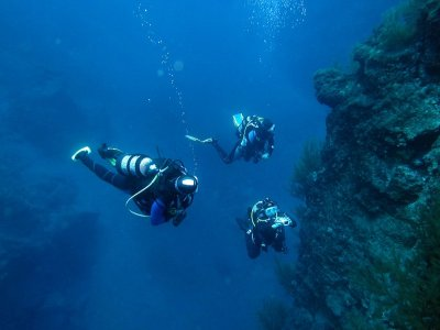 在Isla Bonita  -  La Palma潜水
