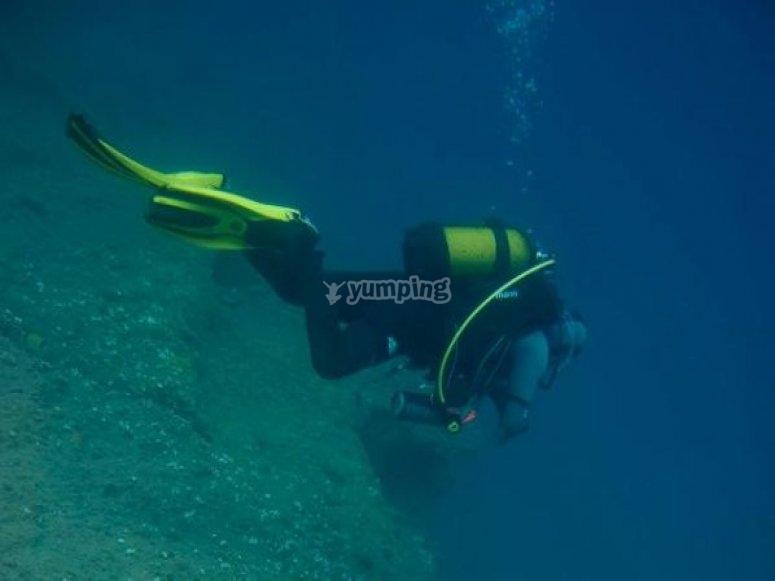 在La Palma潜水
