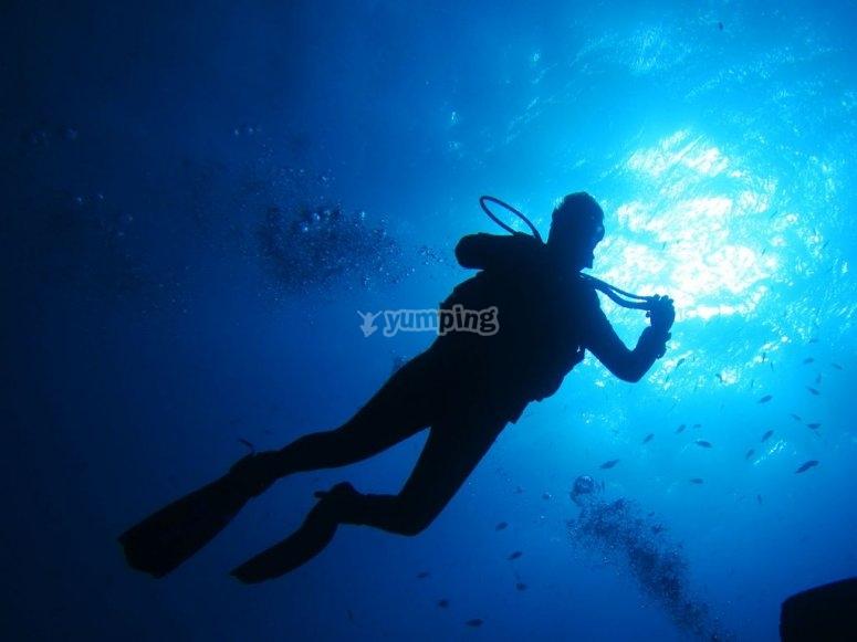 Inmersión de buceo en La Palma