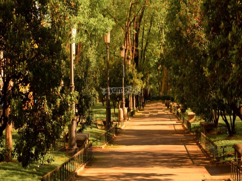 Ruta por Paseo del Prado