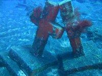 在La Palma上进行2次潜水潜水