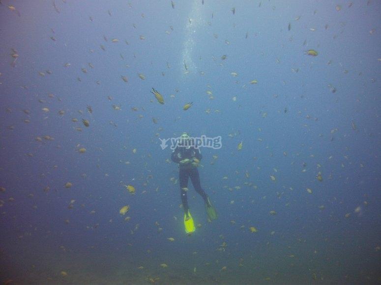 Alcanzado profundidad en el oceano