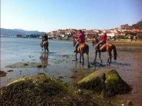 Paseando con los caballos por la playa