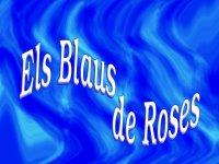 Creuers i Catamarans de Roses