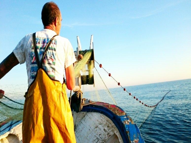 Presenciando el trabajo de los marineros