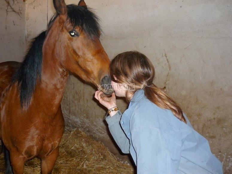 Dando un beso al caballo en Huerta