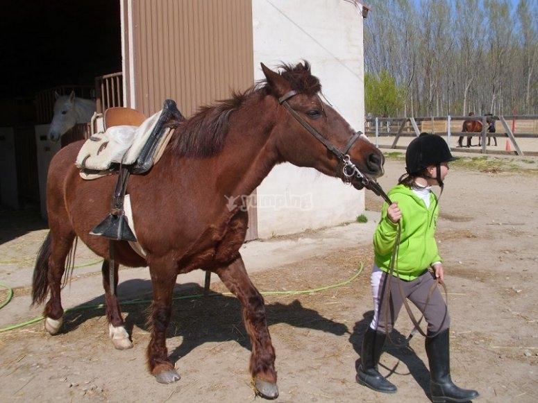 Peque llevando al caballo a la pista en Huerta