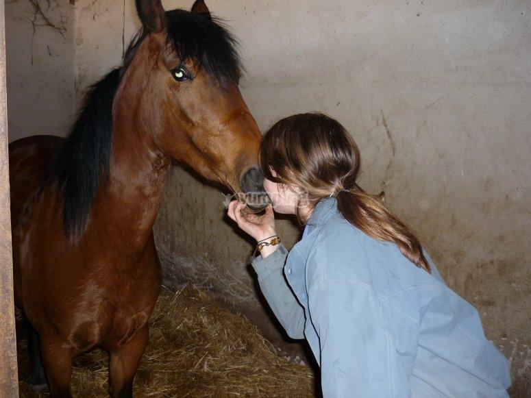 Aprende a montar a caballo en Huerta