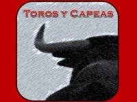 Toros y Capeas