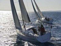 各类船公司帆船