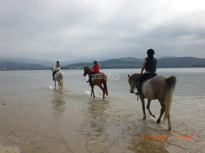montar a caballo en la playa