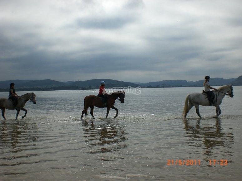 equitacion por la orilla