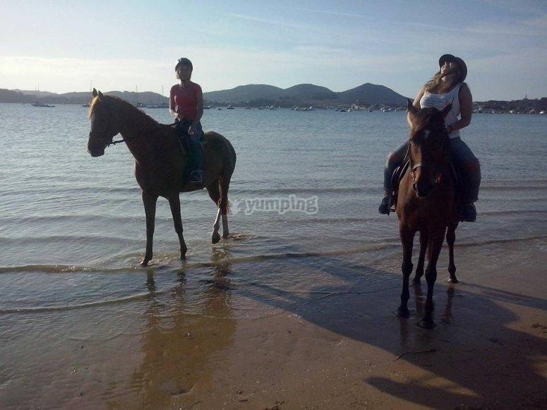 Atardeceres a caballo en Laredo