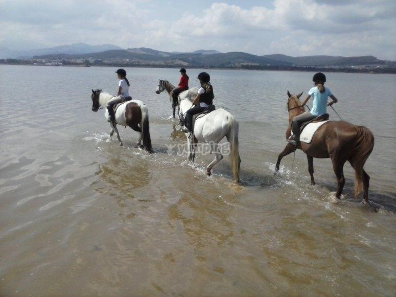 Mojando pezuña en la orilla de Playa El Regatón