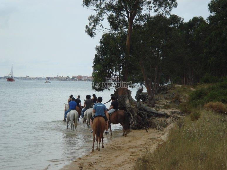 Descubre las bellezas de las playas cántabras