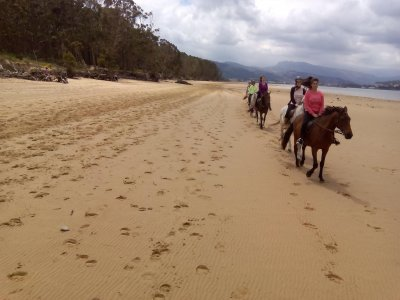 Guided Horse Ride Tour El Regatón beach 80 min