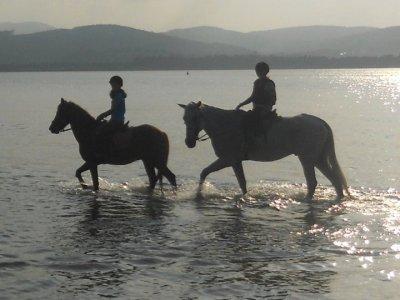 1h 20min Horse Ride Tour at Laredo's Beach