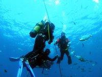 Prácticas en aguas abiertas
