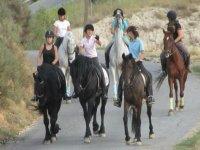 rutas en grupo a caballo