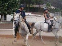 Cavalli per la festa d'addio
