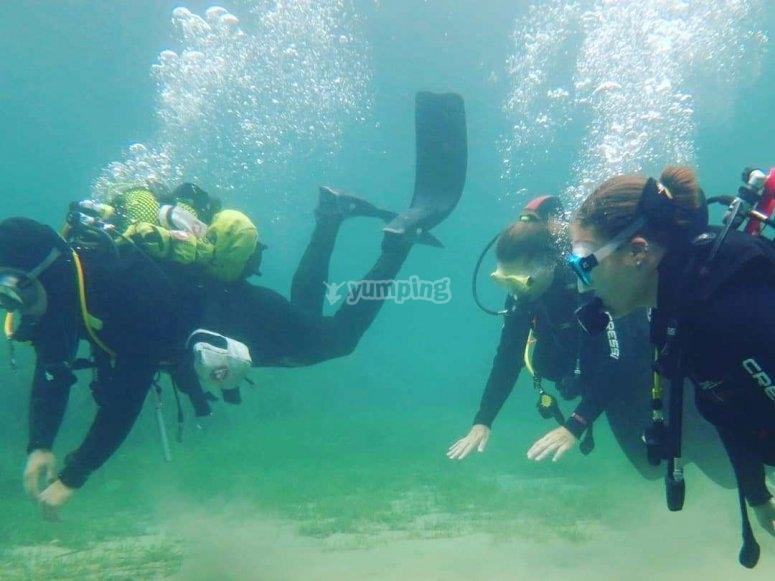 学习最佳潜水技巧