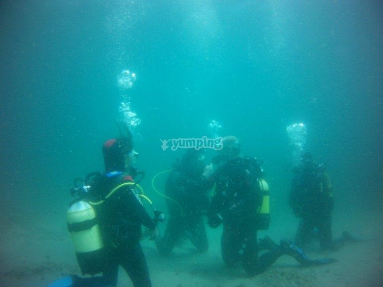 公开水域潜水课程