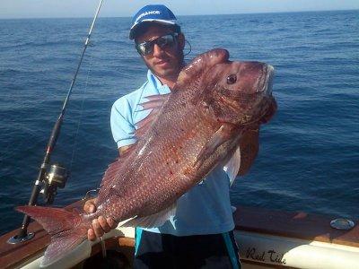 Pesca de fondo Puerto Banús 4 horas