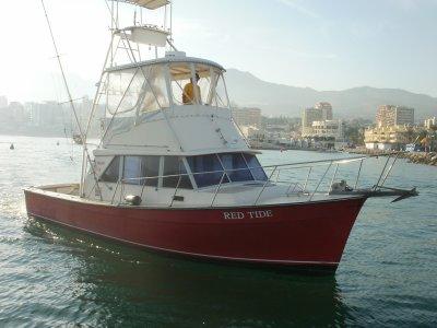 Pesca de curricán en Puerto Banús 8 horas