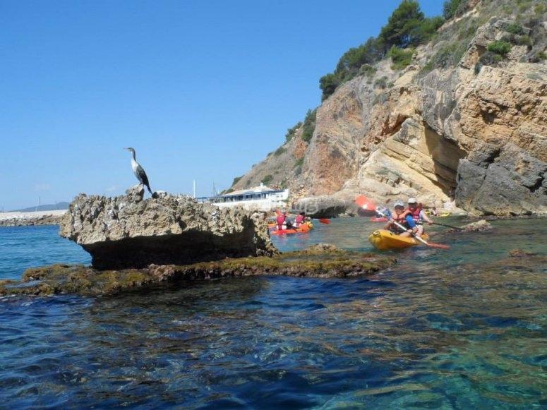 Llegamos a una roca en mitad del agua