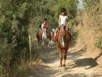 享受最佳骑马之旅