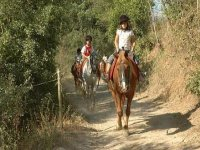 Excursions on horseback