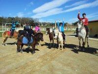 小马和马匹课程