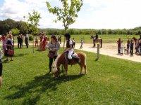 Al aire libre con los ponis