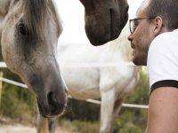 与马匹交流