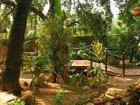 instalaciones zoo castellar