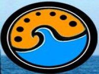 Aventura Tarifa Avistamiento de Cetáceos