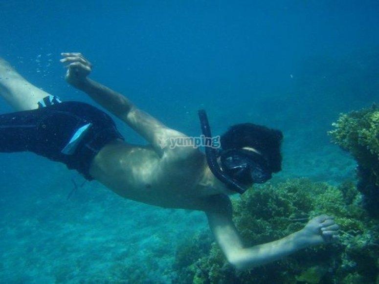 snorkell